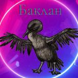 Сormorant